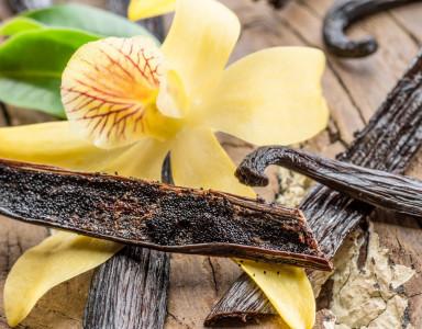 La vanille de Tahiti, une épice très convoitée