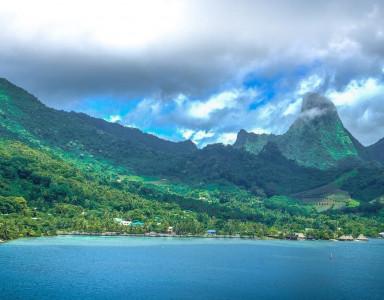 Le monoï de Tahiti, une appellation d'origine contrôlée